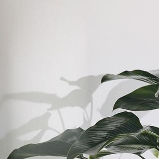 รูปล่าสุด IG เชอรี่ กมลวรรณ แสงชุ่ม